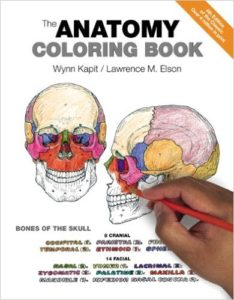 The Anatomy Colouring Book